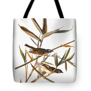 Audubon: Vireo Tote Bag