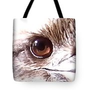 Australia - The Eye Of The Kookaburra Tote Bag