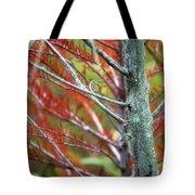 Autumn Colors 25 Tote Bag