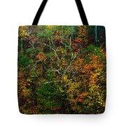 Autumn Hillside Blue Ridge Parkway Tote Bag