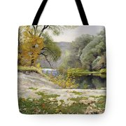 Autumn Landscape In The Vicinity Of Eshar Tote Bag
