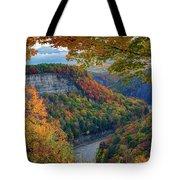 Autumn On The Genesee II Tote Bag