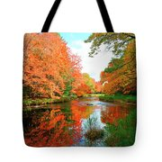 Autumn On The Mersey River, Kejimkujik National Park, Nova Scotia, Canada Tote Bag