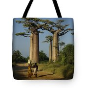 Avenue Des Baobabs Tote Bag