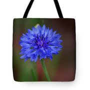 Bachelor Button Blues Lll Tote Bag