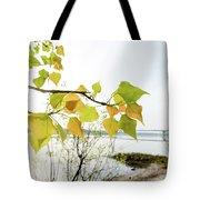 Backlit Poplar Leaves Tote Bag