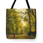 Backs Of The Colleges Cambridge Tote Bag by Cyrus Johnson