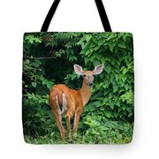 Backyard Deer Tote Bag