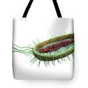 Bacteria Cross Section Tote Bag