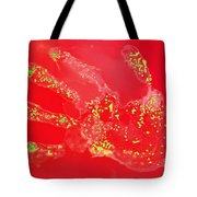 Bacteria Transferred From Hand Tote Bag