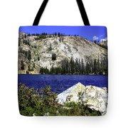 Baker Lake, Idaho Tote Bag