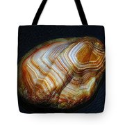 Banded Beauty Tote Bag