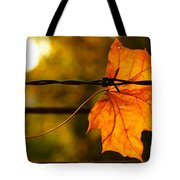 Barbed Autumn Tote Bag