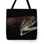 Barbeled Dragonfish Tote Bag