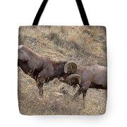 Battering Rams Tote Bag