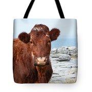 Beautiful Brown Cow On The Burren In Ireland Tote Bag