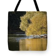 Beautiful Colorful Landscape Image Of Golden Autumn Fall Trees R Tote Bag