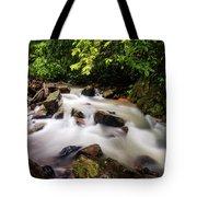Beautiful Stream In Western Ghats Tote Bag