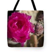 Beavertail Cactus Blossom 2 Tote Bag