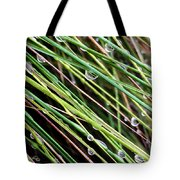 Bedazzled Blades 3 Tote Bag