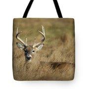 Bedded Buck Tote Bag