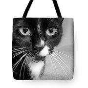 Bella The Cat Tote Bag by Danielle Allard