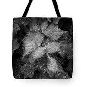 Bellevue Botanical Garden Leaves 6395 Tote Bag