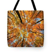 Beneath The Canopy Tote Bag