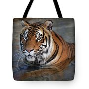 Bengal Tiger Laying In Water Tote Bag