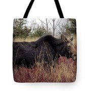 Big Mama Moose Tote Bag