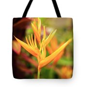 Bird Of Paradise Plant In The Garden. Tote Bag