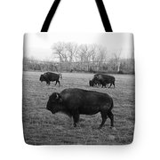 Bison In Black And White Tote Bag