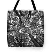 Black And White Nature Detail Tote Bag