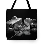 Black And White Orchids Tote Bag