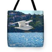 Black-backed Gull Tote Bag