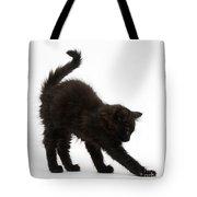 Black Kitten Stretching Tote Bag