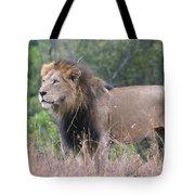 Black Maned Lion Tote Bag