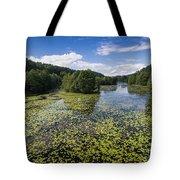 Black River Hancza In Turtul.  Tote Bag
