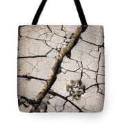 Blair Cracked Mud 1685 Tote Bag