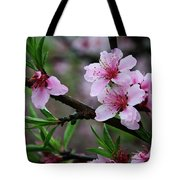 Blossoming Peach Flowers Closeup Tote Bag