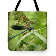 Blue Dragonfly On Leaf Tote Bag
