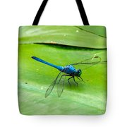 Blue Dragonfly On Lily Pad Tote Bag