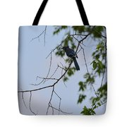 Blue Jay In Tree Tote Bag