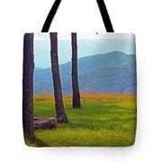 Blue Ridge Mountains - Virginia 2 Tote Bag