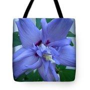 Blue Rose Of Sharon Tote Bag
