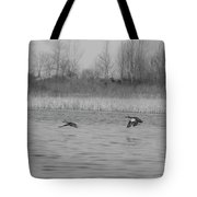 Blue Wing Teal Pair Tote Bag