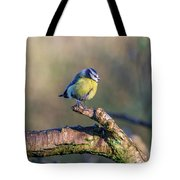 Bluetit On A Branch Tote Bag