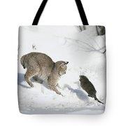Bobcat Lynx Rufus Hunting Muskrat Tote Bag by Michael Quinton