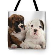 Boxer Puppies Tote Bag