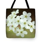 Bradford Pear Flower Tote Bag